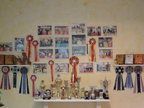 Mehrfache Goldmedaillen Gewinnerin auf internationalen Hundefriseur-Meisterschaften