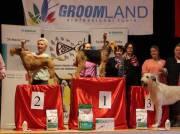 """Margit Schönauer Wien Goldmedaille """"Groomland Show"""" in der Slowakei Workshop Klasse"""