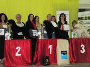"Silbermedaille ""Slovakia Grooming Championship"" in der Slowakei Offene Klasse- Pudel Margit Schönauer Wien"