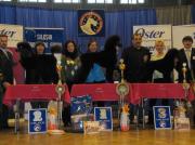 "Bronzemedaille  ""Silesia Grooming Show"" in Polen Offene Klasse- Pudel Margit Schönauer Wien"